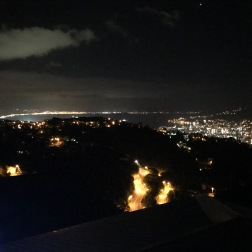 White girl party views in Wellington