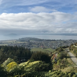 The view over Rotorua