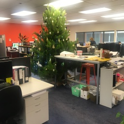 Work Christmas trees